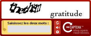 capture d'écran de ReCAPTCHA, un CAPTCHA version audio