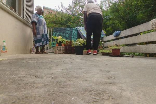 Photo de 2 personnes qui jardinent